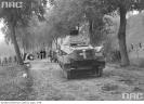 Niemiecki wóz pancerny po przełamaniu polskich zapór przeciwczołgowych